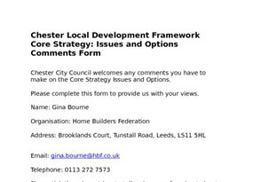 Chester Core Strategy Issues   Options June 08